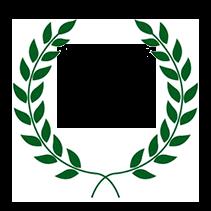 Mendtronix Inc. MTI-service-since-1998-wreath-transparent ABOUT US